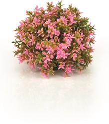 BiOrb Deco bloemenbol - roze