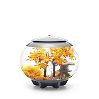 Aquariumproducts - Voorpag - Categorie 1