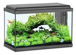 Aquatlantis Aquarium Advance LED 50 - zwart kopen?