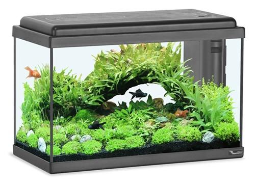 Aquatlantis Aquarium Advance LED 50 - zwart