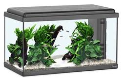 Aquatlantis Aquarium Advance LED 60 - zwart