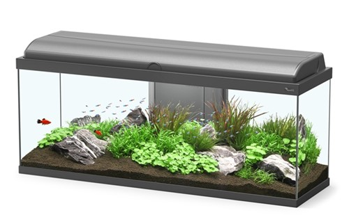 Aquatlantis Aquarium Aquadream 100 Led - zwart