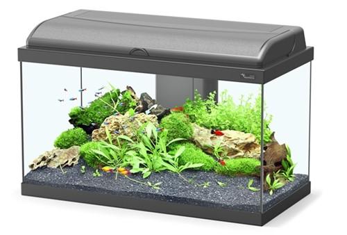 Aquatlantis Aquarium Aquadream 60 Led - zwart