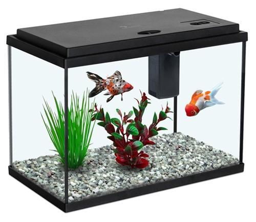 Aquatlantis Funny Fish 35 - zwart