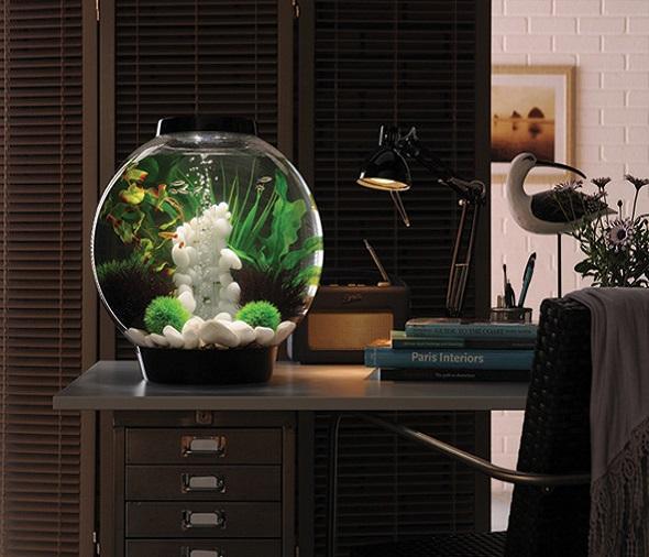 Aquariumproducts - Voorpag - Big Slider 1  - copy