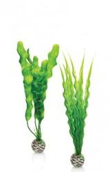 BiOrb plantenset medium - groen