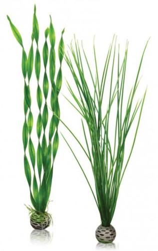 BiOrb plantenset groot - groen