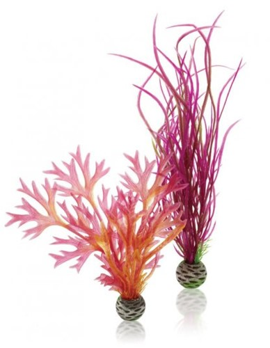 BiOrb plantenset medium - rood&roze