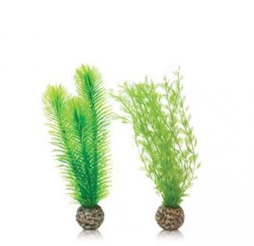 BiOrb Easy plant klein Verenvaren