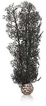 BiOrb Hoornkoraal medium - zwart