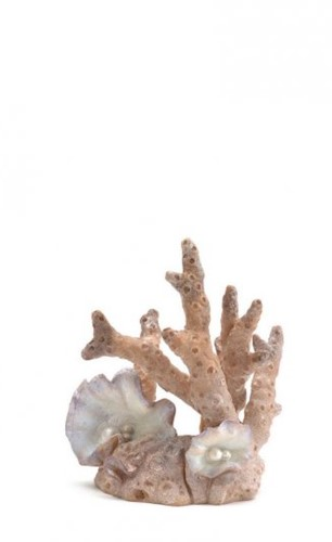 BiOrb Fan Coral White Small