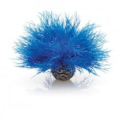 BiOrb Aquarium zeelelie - blauw