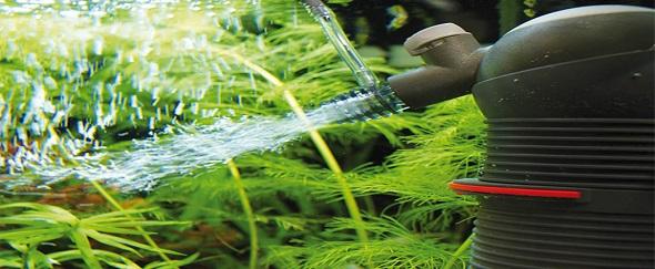 Aquariumproducts - Voorpag - Welkom banner 1