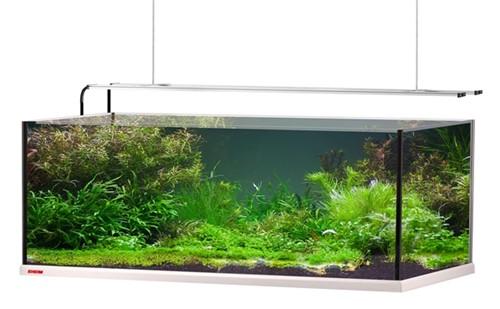 Eheim Aquarium Proxima Plus 325