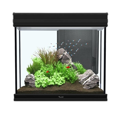 Aquatlantis Aquarium Fusion 60 60x40x60