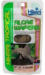Hikari Algae Wafers - 20 gram