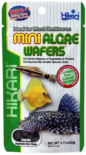 Hikari Mini Algae Wafers - 22 gram - over de datum