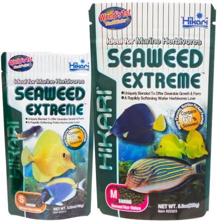 Hikari Seaweed Extreme medium - 90 gram - over de datum
