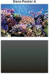 Superfish Aquarium Deco Poster A 100 x 49 cm