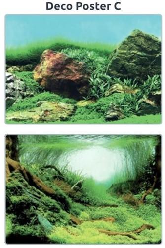 Superfish Aquarium Deco Poster C 60 x 30 cm