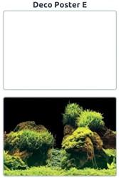 Superfish Aquarium Deco Poster E 100 x 49 cm