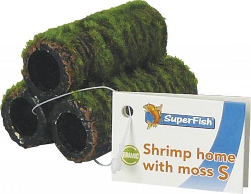 Superfish Shrimp home medium